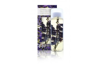 Linden Leaves - Body Oil 250ml - Aromatherapy Synergy - Absolute Dreams